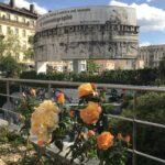 des roses et le monuments aux frères lumière